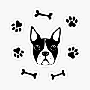 Boston terrier dog, bones and paw prints stickers